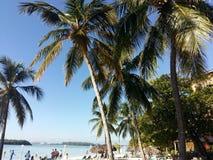 多米尼加 库存照片