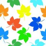 多色叶子无缝的样式 库存照片