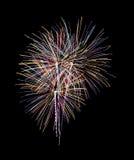 多色烟花,夜场面,颜色,企业概念 免版税图库摄影