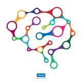 多色连接脑子,人脑的创造性的概念 图库摄影