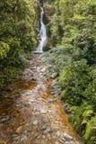 多萝西在湖Kaniere跌倒在新西兰 库存照片