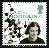 多萝西・克劳福特・霍奇金英国邮票 库存图片