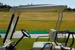 多虫的高尔夫球 免版税库存图片