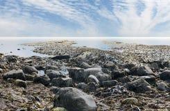 多西特海岸英国Kimmeridge海湾 免版税库存照片