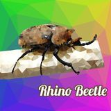 多角形传染媒介犀牛甲虫 免版税库存照片