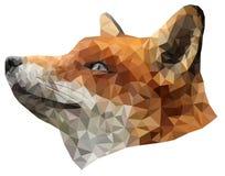 多角形例证狐狸 图库摄影