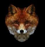 多角形例证狐狸 免版税图库摄影