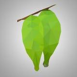 多角形新鲜的叶子 库存图片