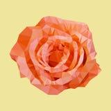 多角形桔子上升了,多角形三角花,传染媒介 皇族释放例证