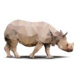 多角形犀牛 免版税库存照片