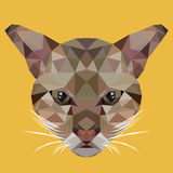 多角形猫,多角形动物,隔绝了传染媒介例证 免版税库存照片