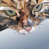 多角形猫 库存照片