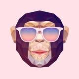多角形猴子传染媒介的画象  三角用途印刷品的例证猴子在T恤杉和海报 几何低落 图库摄影