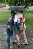 多雨夏日 免版税库存照片