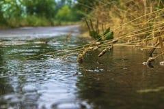 多雨天气 免版税库存照片