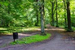 多雨日的公园 免版税库存图片
