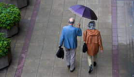 多雨春天和资深夫妇在伞下 免版税库存图片