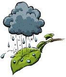 多雨的叶子 向量例证