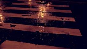 多雨的晚上 绿灯红色业务量黄色 多雨城市的晚上 红绿灯的反射 股票视频