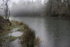 多雨的湖 库存图片