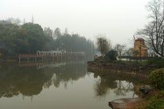 多雨水池在植物园里 免版税库存照片