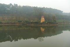 多雨水池银行在植物园里 免版税图库摄影