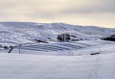 多雪农业的场面 图库摄影