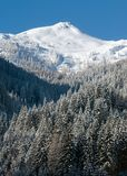 多雪奥地利的山 免版税库存照片