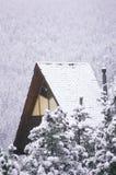 多雪客舱的森林 库存照片