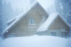 多雪客舱的森林 库存图片