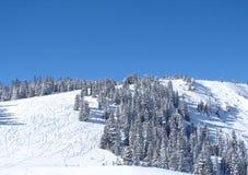 多雪小山的滑雪 库存照片