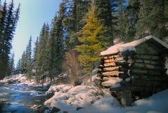 多雪山的河 免版税图库摄影