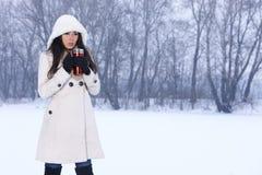 多雪户外的秀丽 图库摄影