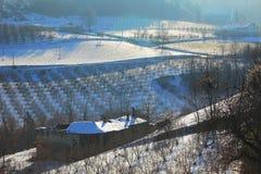 多雪房子老山麓的种植园 库存照片