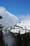 多雪森林的山 库存照片