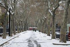 多雪横向的公园 库存照片