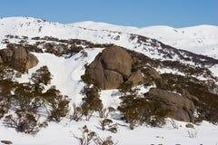 多雪澳洲的山s 免版税库存照片