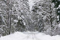 多雪的乡下公路 库存照片