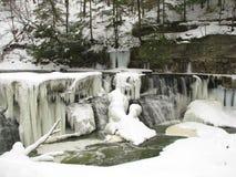 冻多雪的伟大的秋天瀑布 免版税库存图片
