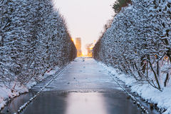 多雪的公园冬天风景在格但斯克 免版税库存照片