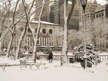 多雪的公园 免版税图库摄影