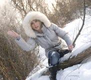 多雪的冬天 免版税库存图片