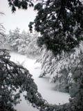 多雪的冬天 免版税图库摄影