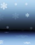 多雪的反映 图库摄影