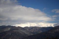 多雪的喀尔巴阡山脉 免版税库存照片