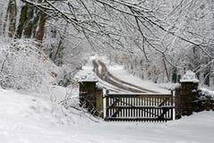 多雪的场面 免版税库存照片