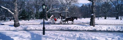 多雪的城市街灯、马和支架在中央公园,曼哈顿,纽约, NY全景在一个晴朗的冬日 库存照片