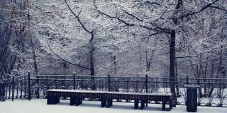 多雪的天 长凳空的公园 阿尔卑斯包括房子场面小的雪瑞士冬天森林 图库摄影