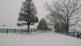 多雪的天 库存照片