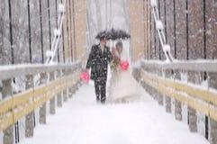 多雪的婚礼 库存照片